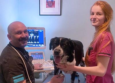 l'échocardiographie