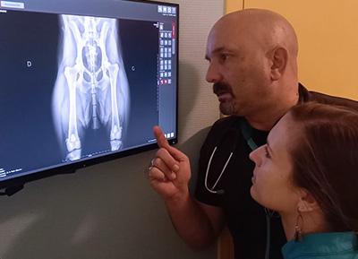 la radiographie